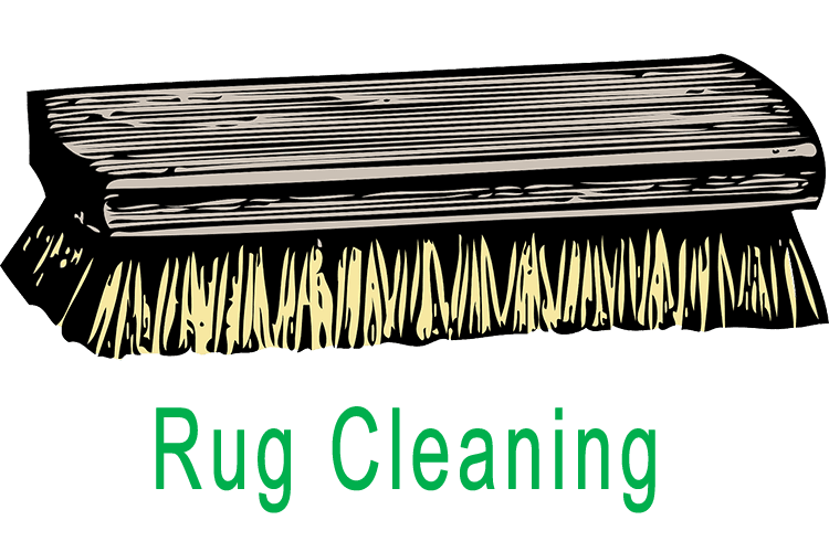 Rug cleaning illustration